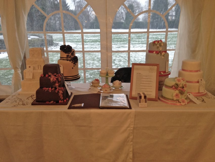 Snow and the Lawn Wedding Fair